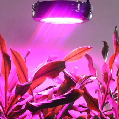 Led Ufo light grow